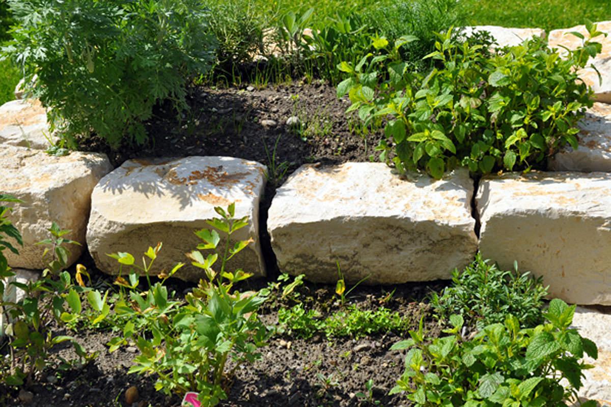 Der Kräutergarten für unsere Gäste