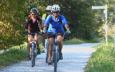 E-Bikes auf dem Springerhof sorgen für Rückenwind